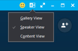 Skype for Business 2016 View
