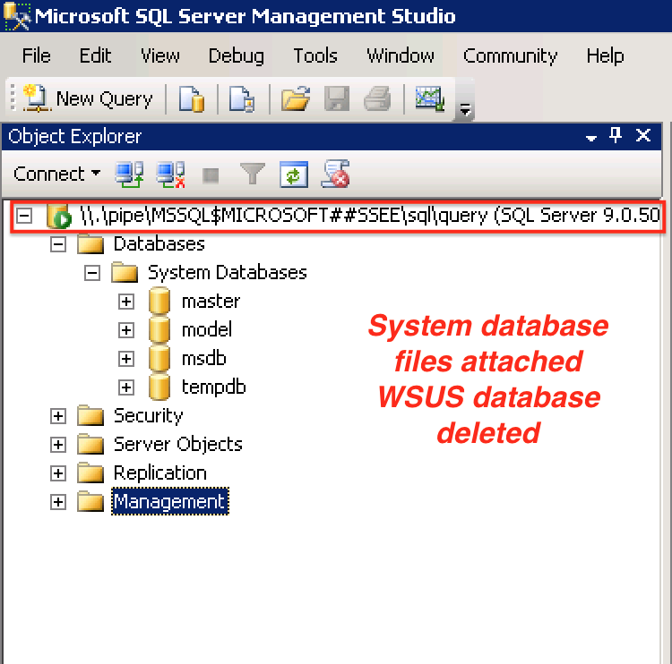 Confirmation deleting WSUS database