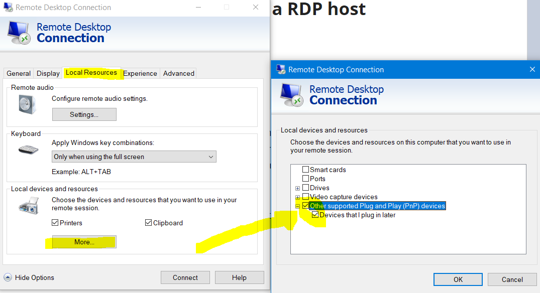 Getting a local scanner recognized by a RDP host