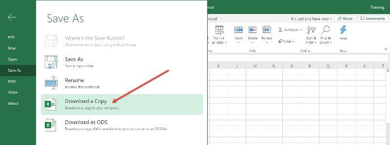 Download a Copy: Excel Online
