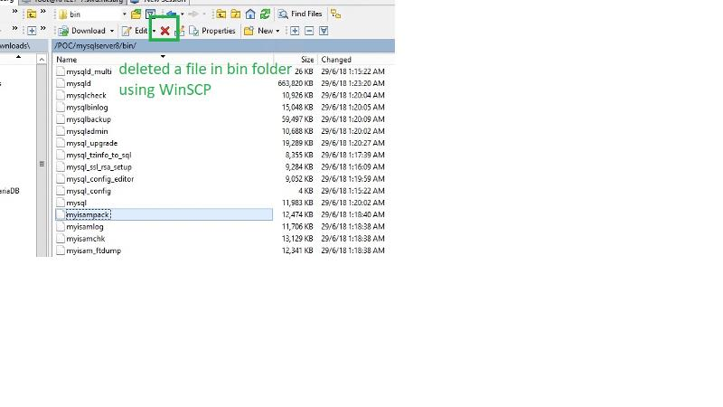 accidentally delete a files in MySQL bin folder using WinSCP