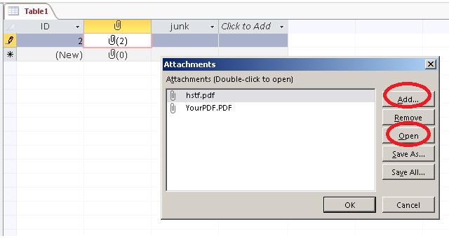 attachment field datatype